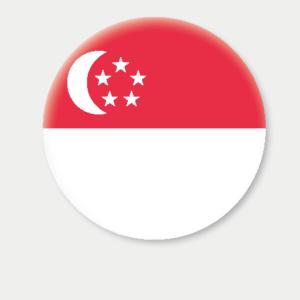 SINGAPORE -rollator flag-01